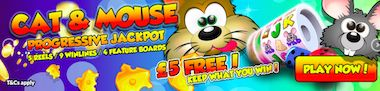 mFortune Free Slots Online